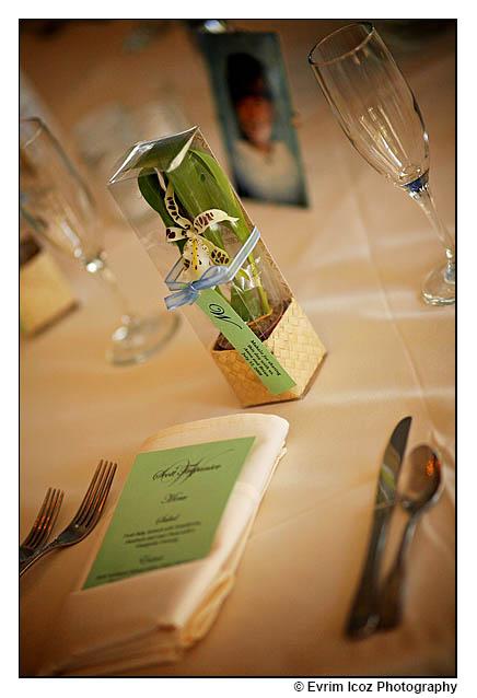 Wedding Favor orchids Plantable