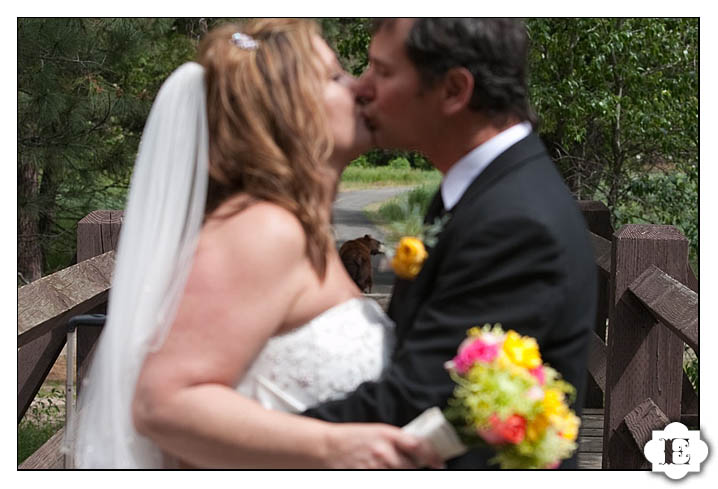 Yosemite Valley Wedding