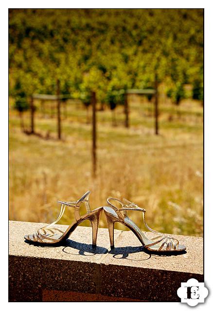 chemeketa eola vineyard