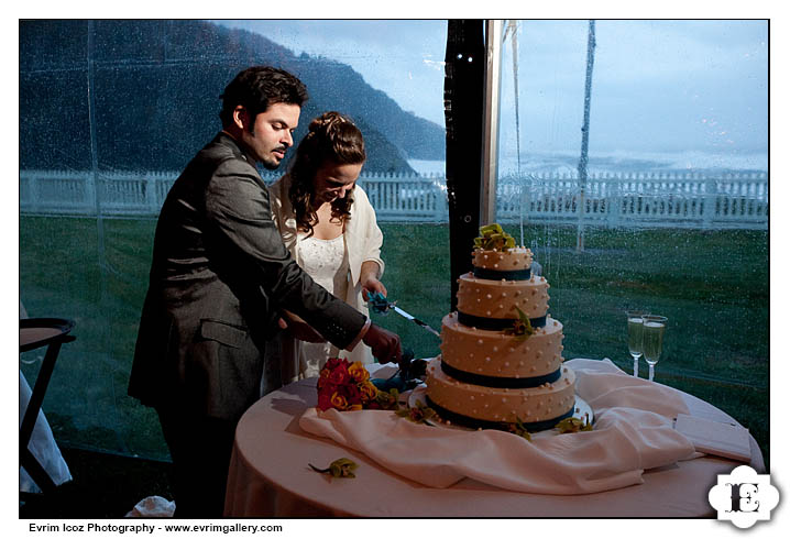 heceta head lighthouse wedding