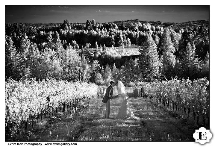 Garden Vineyards Nines Hotel Wedding Reception and Ceremony
