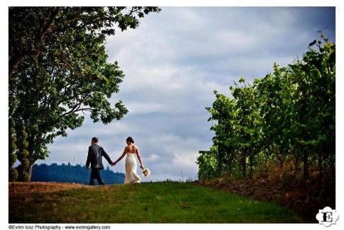 zenith-vineyard-wedding-34.jpg
