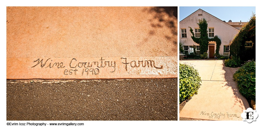 Wine Country Farm and Bed and Breakfast Wedding