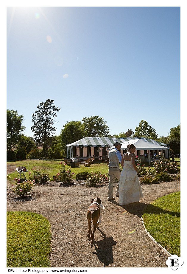 Santa Ynez Valley Wedding
