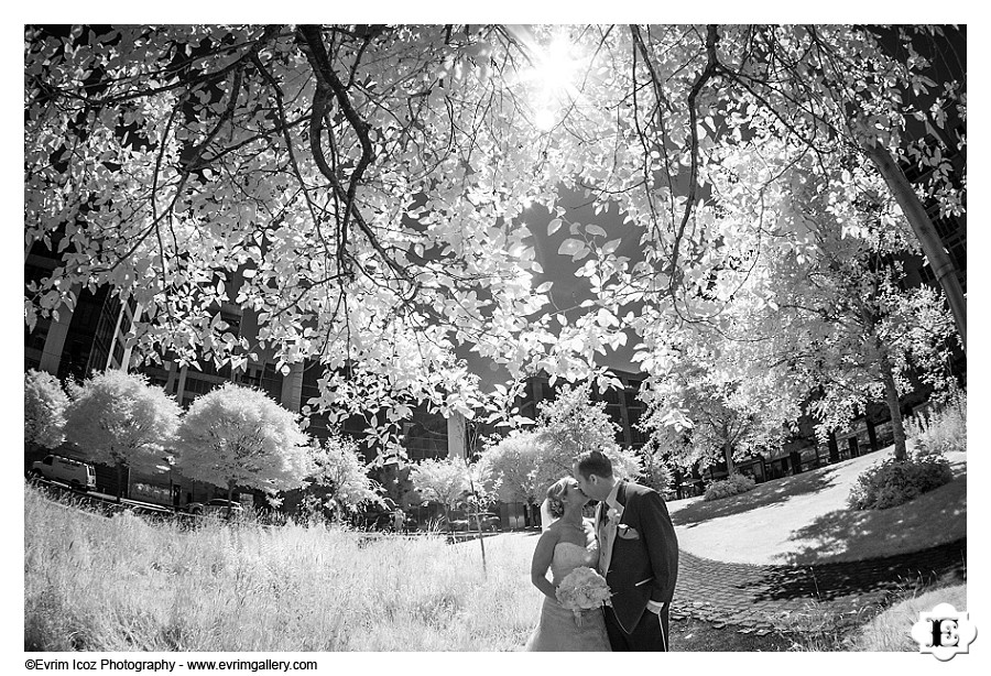 Portland Tanner Springs Park