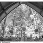 stevens-pavilion-hoyt-arboretum-08.jpg