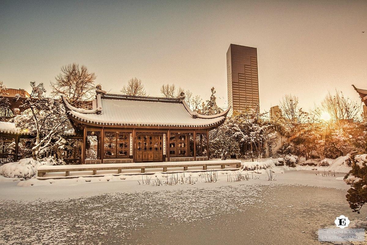 winter garden chinese restaurants